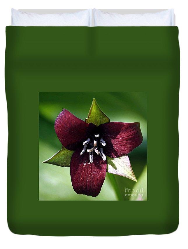 Perennial Duvet Cover featuring the photograph Trilium by Beth Phifer