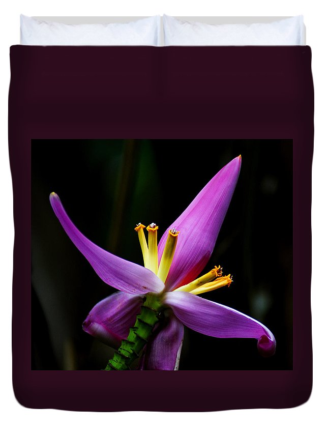 Flower Duvet Cover featuring the photograph Tropical Flower by Brian Kerls