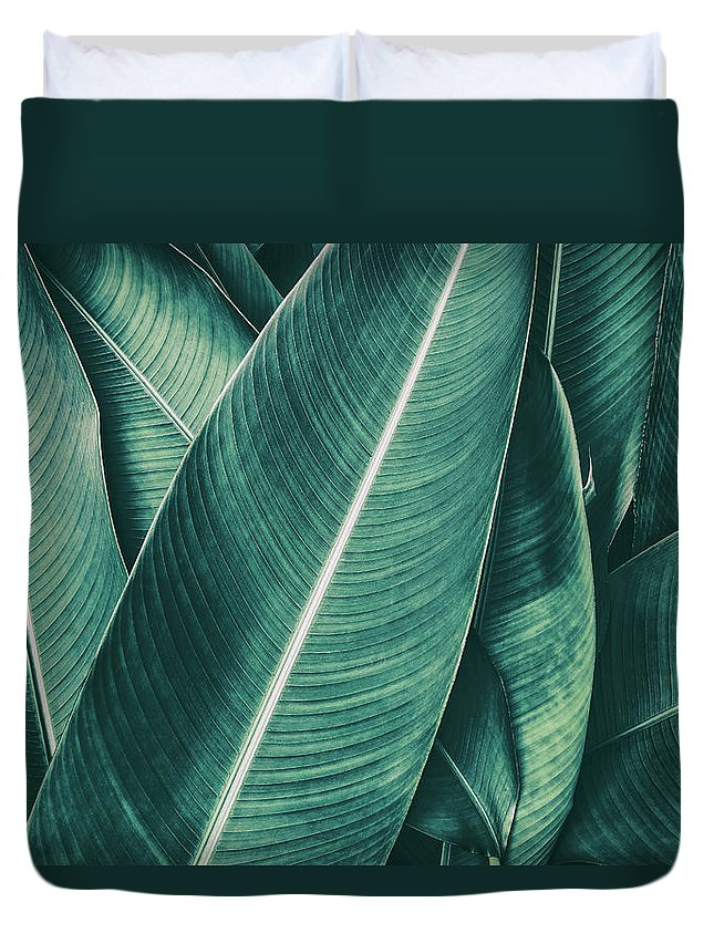 Spa Duvet Cover featuring the photograph Tropical Palm Leaf, Dark Green Toned by Pernsanitfoto