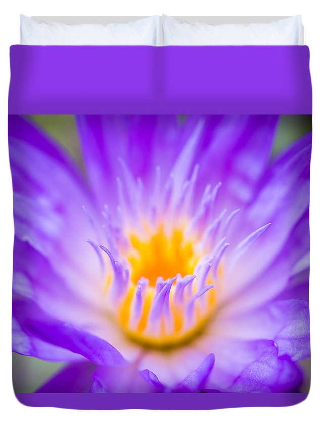 Star Of Siam Duvet Cover featuring the photograph Tropical Waterlily Glow by Priya Ghose