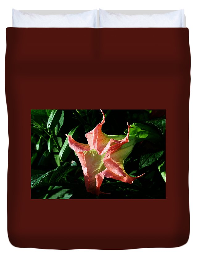 Trumpet Flower Duvet Cover featuring the photograph Trumpeteer by Doug Norkum