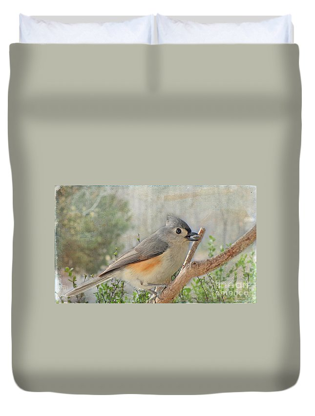 Nature Duvet Cover featuring the photograph Tuffted Titmouse Early Spring by Debbie Portwood