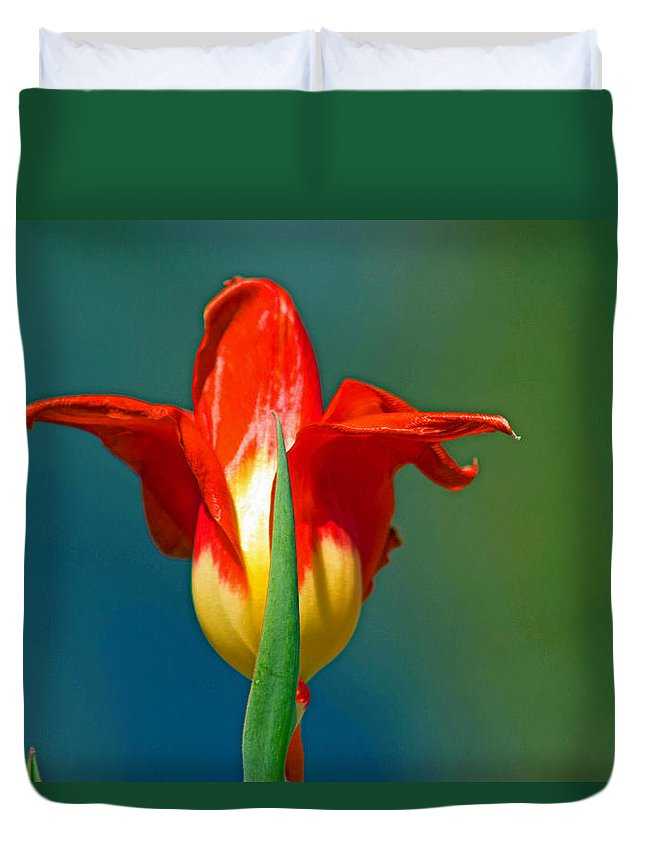 Yellow Duvet Cover featuring the photograph Tulip 5 by Howard Tenke