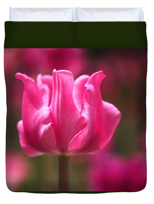 Tulip Duvet Cover featuring the photograph Tulip At Attention by Rona Black
