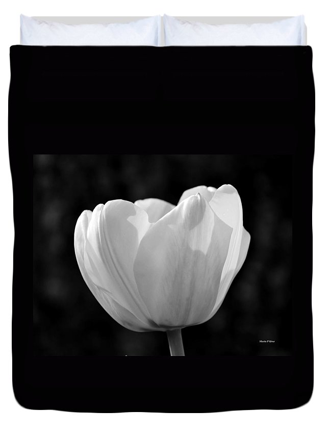 Tulip Bw Duvet Cover featuring the photograph Tulip Bw by Maria Urso