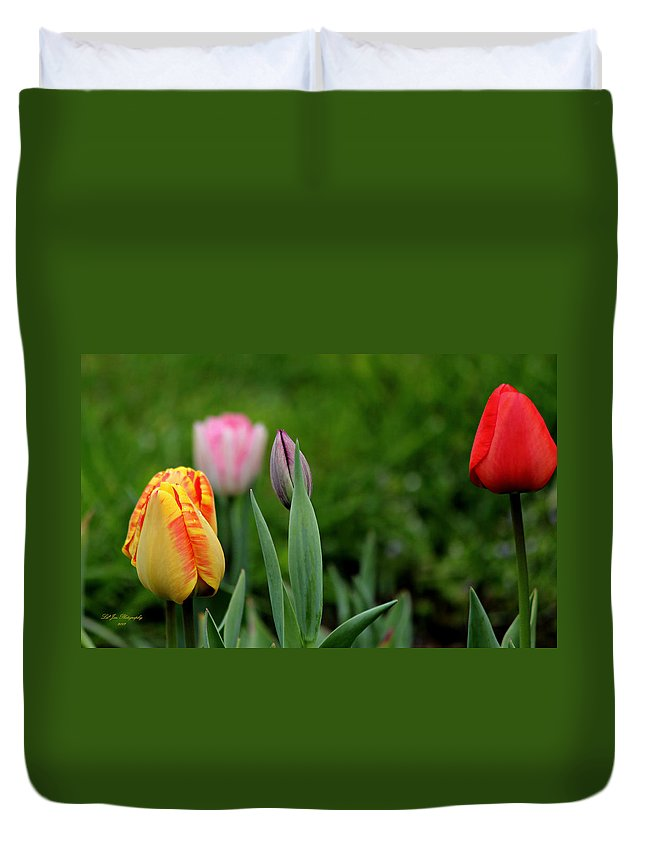 Flower Duvet Cover featuring the photograph Tulip Glory by Jeanette C Landstrom