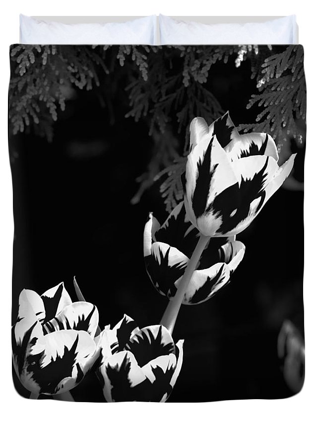 Flower Duvet Cover featuring the photograph Tulip Group In Black And White by John Feiser