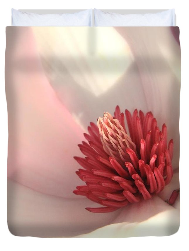 Saucer Magnolia Duvet Cover featuring the photograph Tulip Tree Blossom by Carol Groenen