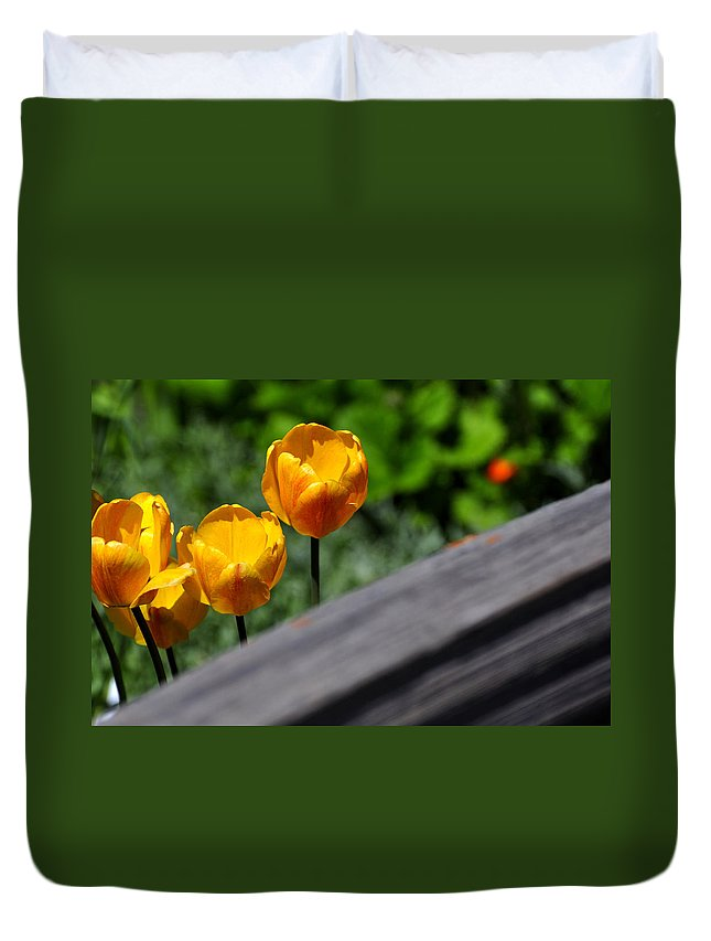 Breckenridge Duvet Cover featuring the photograph Tulips 5987 by Jerry Sodorff