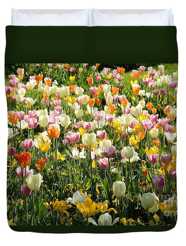 Tulips Duvet Cover featuring the photograph Tulips In Spring by Kerstin Ivarsson