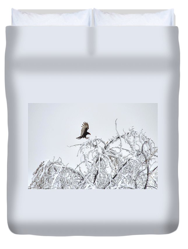 Turkey Vulture Duvet Cover featuring the photograph Turkey Vulture In The Snow by M Dale