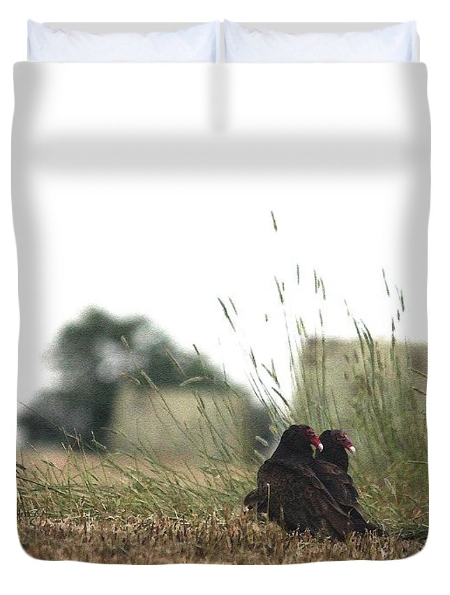 Mccombie Duvet Cover featuring the painting Turkey Vultures by J McCombie