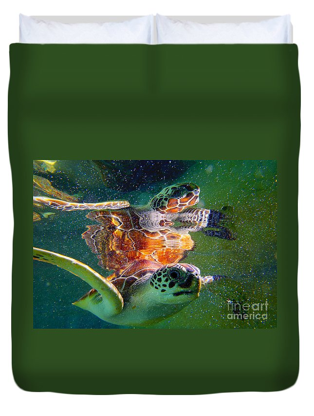 Turtle Duvet Cover featuring the photograph Turtle Reflection by Carey Chen