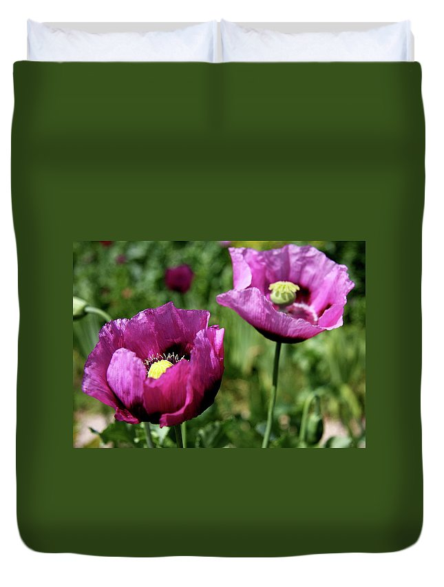 Poppy Duvet Cover featuring the photograph Twin Poppies by Christiane Schulze Art And Photography