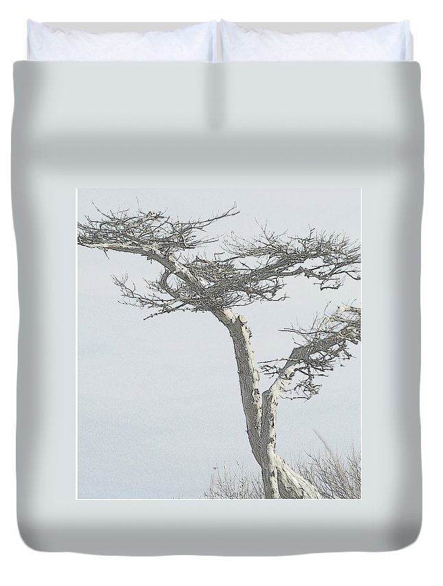 Twisted Tree Duvet Cover featuring the photograph Twisted Tree 2 by Kathy Barney