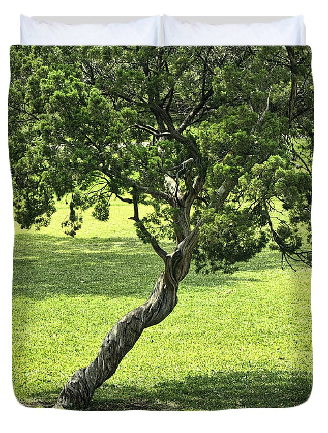 Tree Duvet Cover featuring the photograph Twisted Tree by Brenda Hackett