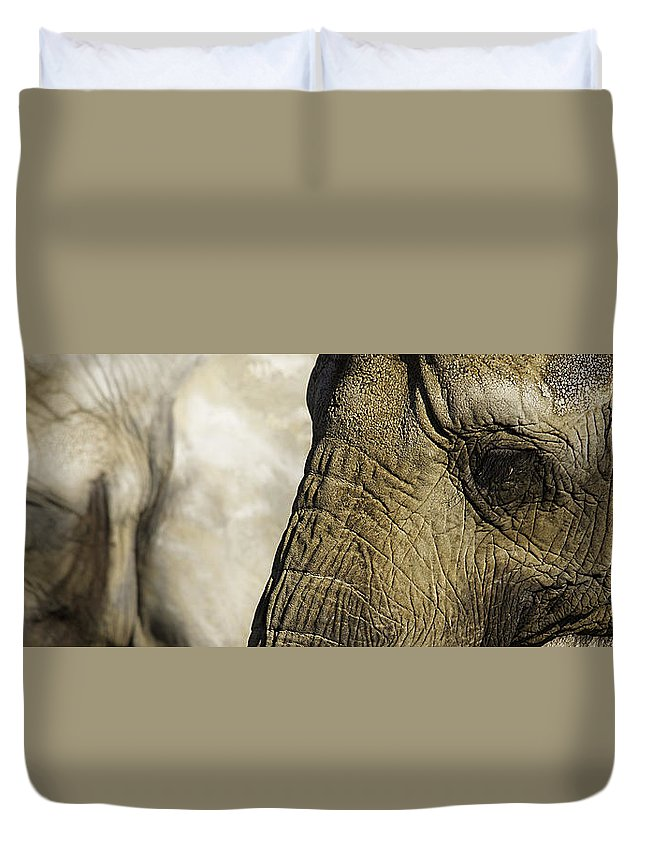 Toronto Zoo Duvet Cover featuring the photograph Two Elephants' Eyes by Peter v Quenter