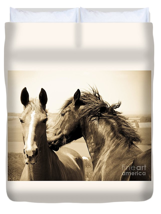 Two Duvet Cover featuring the photograph Two Horses by Lana Enderle