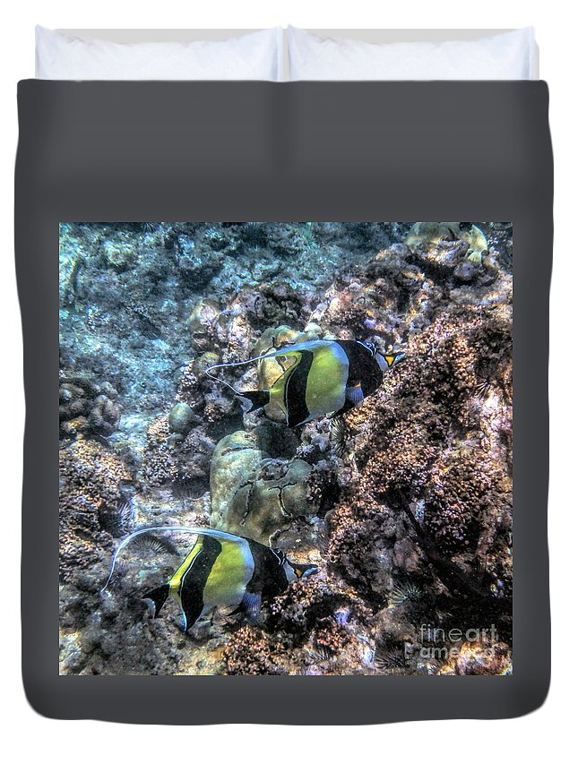 Moorish Idol Duvet Cover featuring the photograph Two Of A Kind by Peggy Hughes