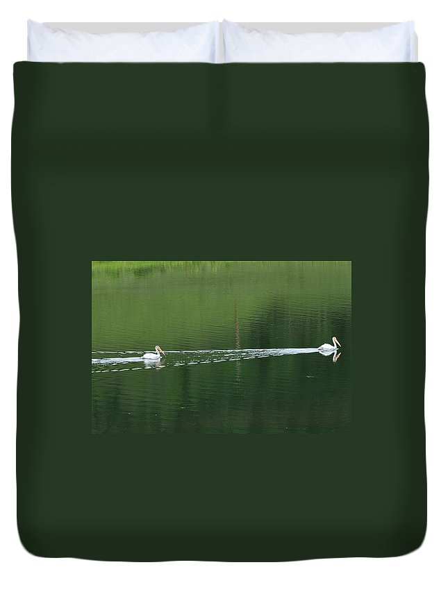 Colorado Duvet Cover featuring the photograph Two Pelicans On Lake by Marilyn Burton