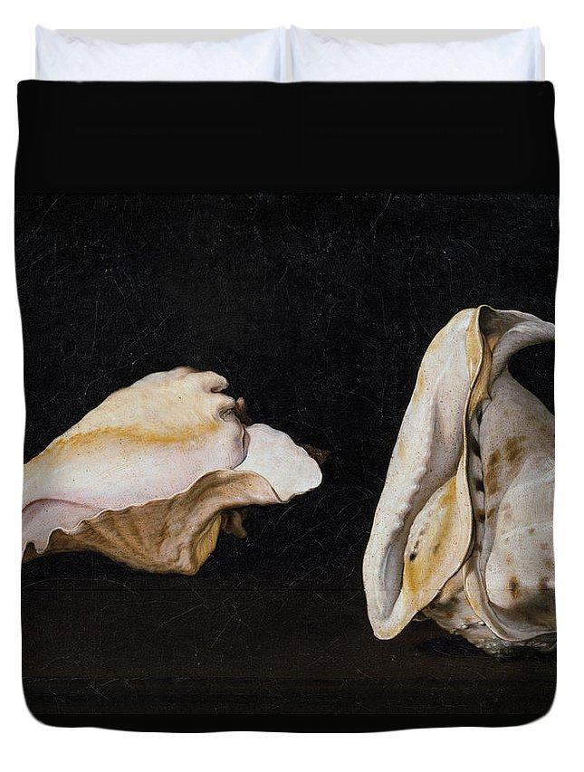 Corals Duvet Cover featuring the painting Two Shells by Filippo Napoletano