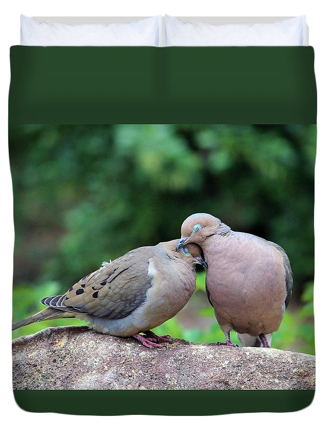Doves For Sale >> Two Turtle Doves Duvet Cover For Sale By Cynthia Guinn