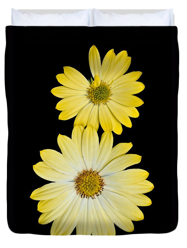 Agriculture Duvet Cover featuring the digital art Two Yellow by Nathan Wright
