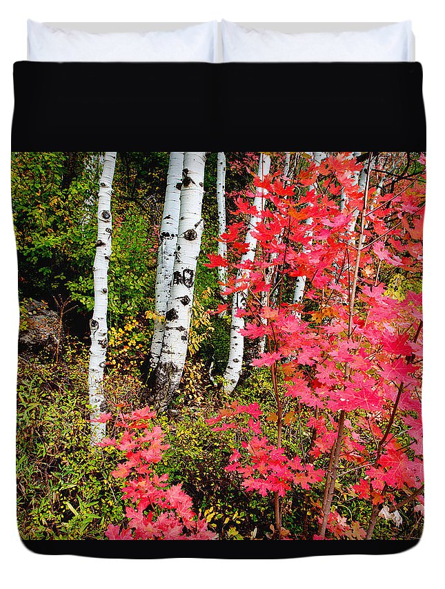 Uinta Colors Duvet Cover featuring the photograph Uinta Colors by Chad Dutson