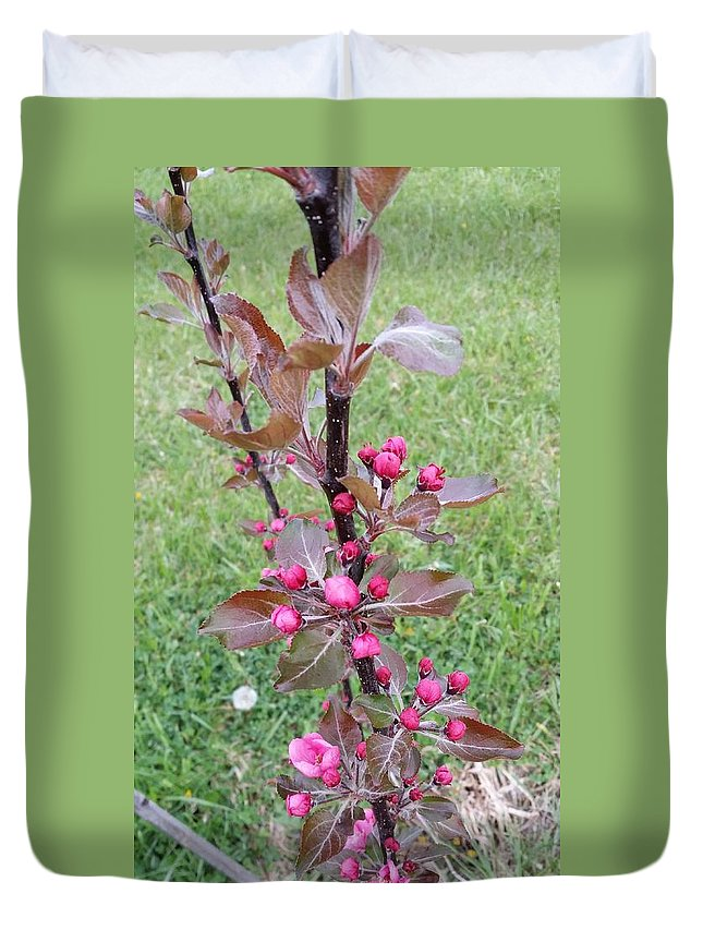 Landscape Duvet Cover featuring the photograph Ukrainian Apple Tree Bloom by Mark Victors