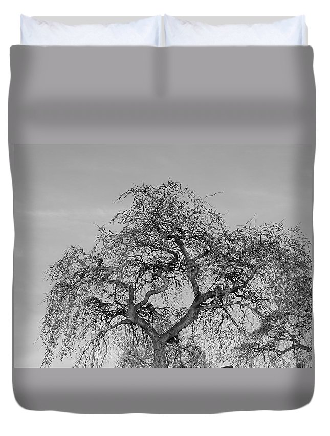 Tree Duvet Cover featuring the photograph Undead by Natasha Anderson