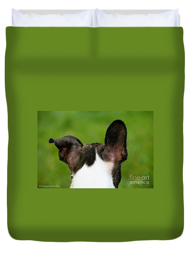 Pet Duvet Cover featuring the photograph Undecided by Susan Herber