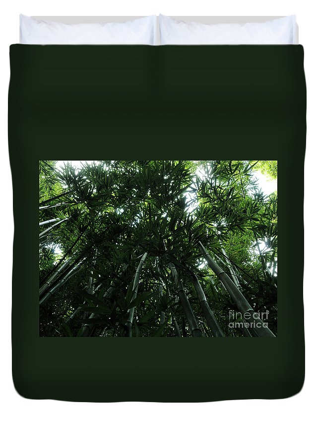 Bamboo Duvet Cover featuring the photograph Under The Bamboo Haleakala National Park by Vivian Christopher