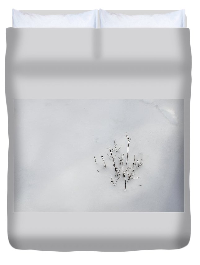 Natural Abstract Duvet Cover featuring the photograph Underfoot by Susan Capuano