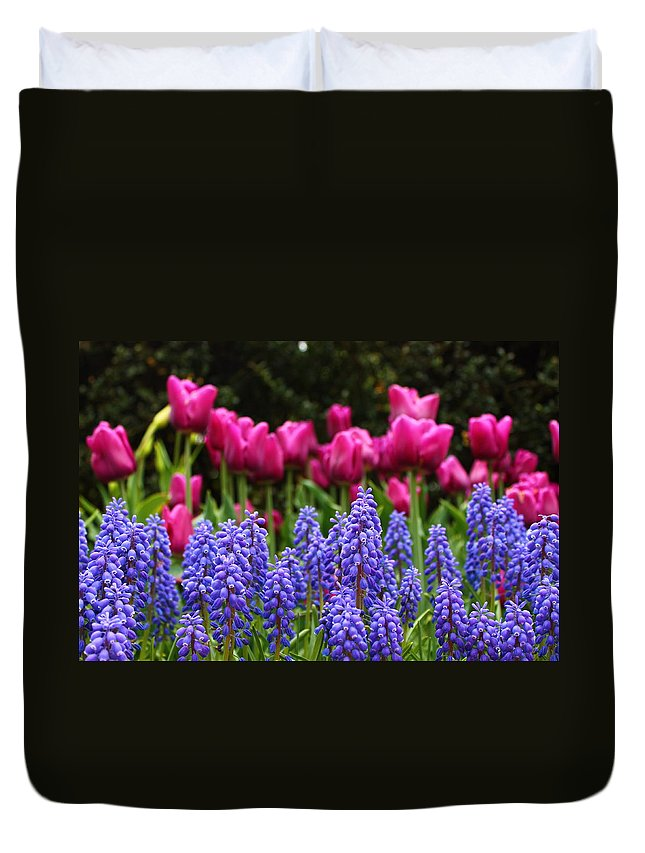 Purple Horn Like Flowers Duvet Cover featuring the photograph Unknown Flowers by Catie Canetti