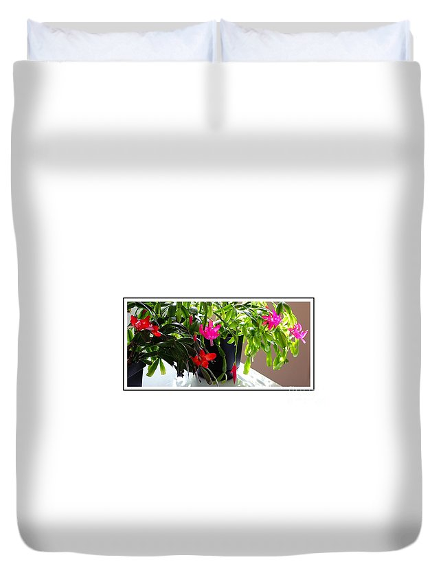 Unusual Simultaneous Bloomers 6 Duvet Cover featuring the photograph Unusual Simultaneous Bloomers 6 by Barbara Griffin