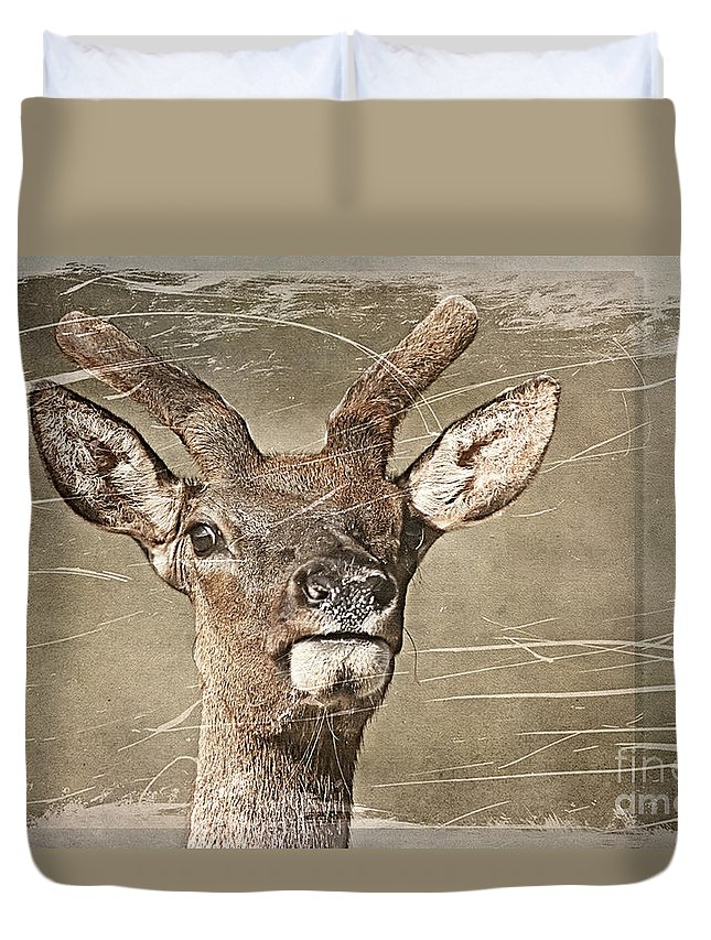 Deer Duvet Cover featuring the photograph Up Close And Personal by Teresa Zieba