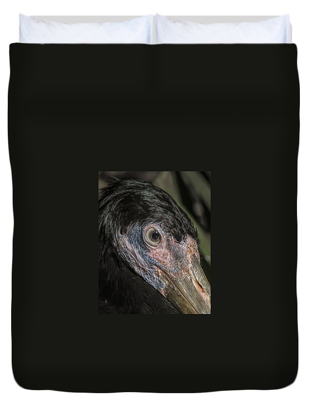 Heron Duvet Cover featuring the photograph Up Close by James Ekstrom