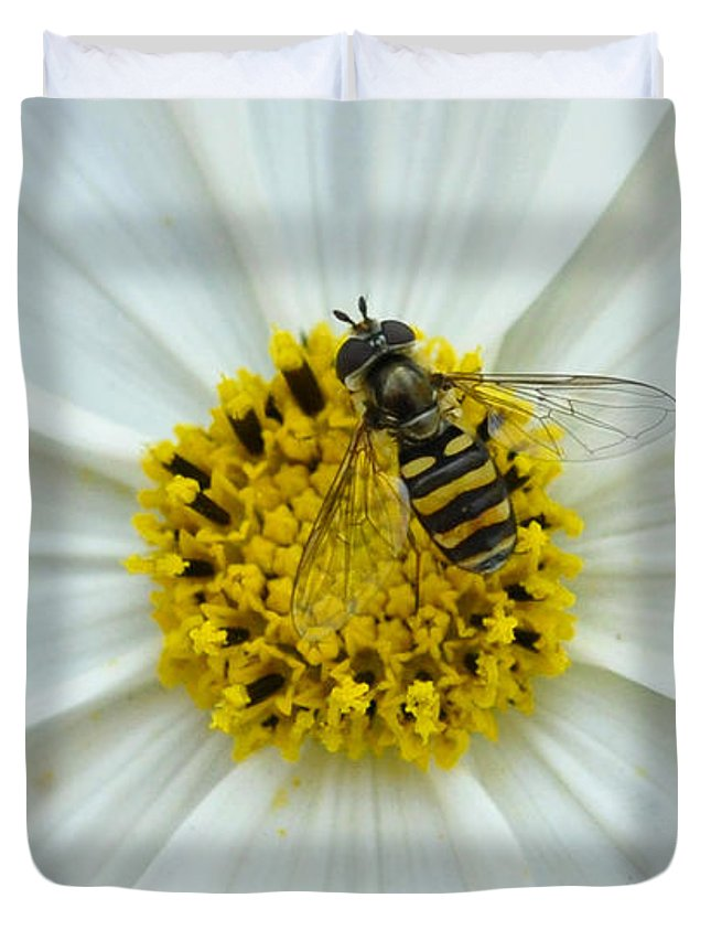 Bee Duvet Cover featuring the photograph Up Close With The Bee And The Cosmo by Verana Stark