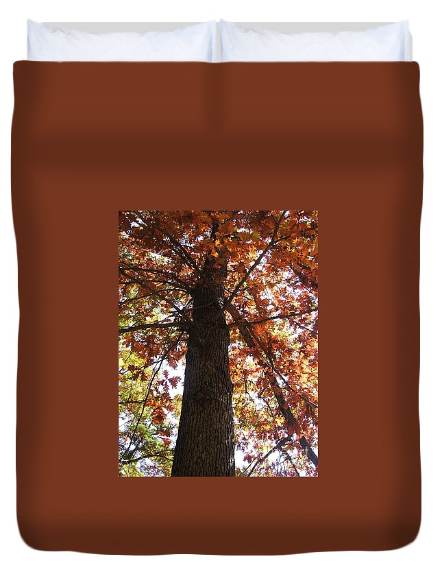 Tree Duvet Cover featuring the photograph Up Fall by Minding My Visions by Adri and Ray