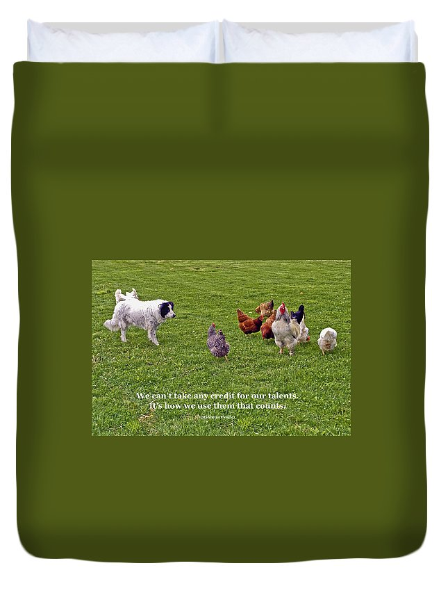 Border Collie Dog Herding Rooster & Chickens Duvet Cover featuring the photograph Using Talents by Sally Weigand