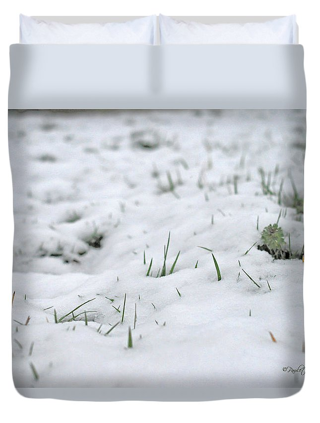 Nature Duvet Cover featuring the photograph Valiantly Pushing Through by Paulette B Wright