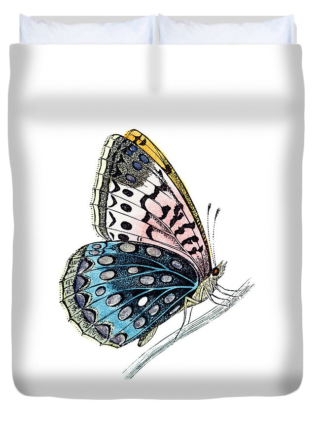 Engraving Duvet Cover featuring the digital art Venus Fritillary Butterfly by Andrew howe