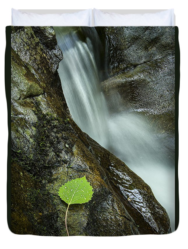 Vermont Duvet Cover featuring the photograph Vermont Aspen Leaf Waterfall Camels Hump Duxbury by Andy Gimino