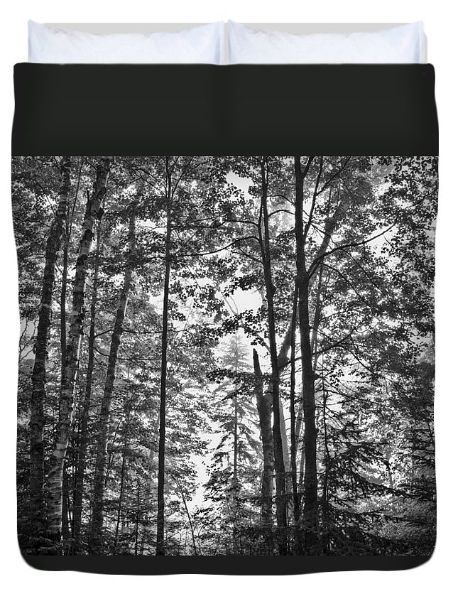 Vermont Duvet Cover featuring the photograph Vermont Forest Sunrise Ricker Pond Black And White by Andy Gimino