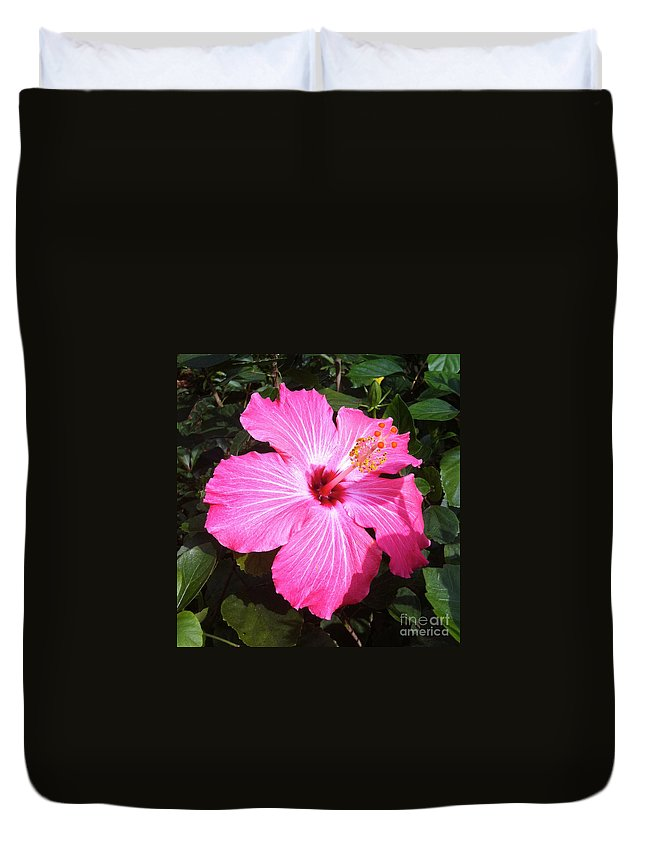 Hibiscus Duvet Cover featuring the photograph Vibrant Pink Hibiscus by Carol Groenen