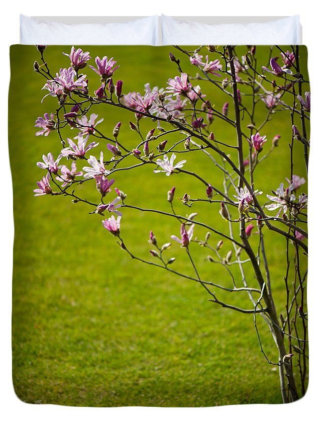 Magnolia Duvet Cover featuring the photograph Vibrant Pink Magnolia Blossoms by Arletta Cwalina
