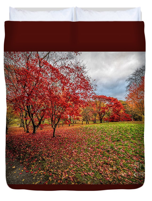 Acer Duvet Cover featuring the photograph View Of Autumn by Adrian Evans