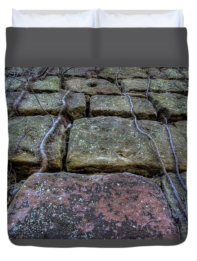 Vines Duvet Cover featuring the photograph Vines On Stonework by David Dufresne