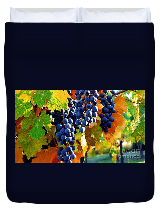 Autumn Duvet Cover featuring the photograph Vineyard 2 by Xueling Zou