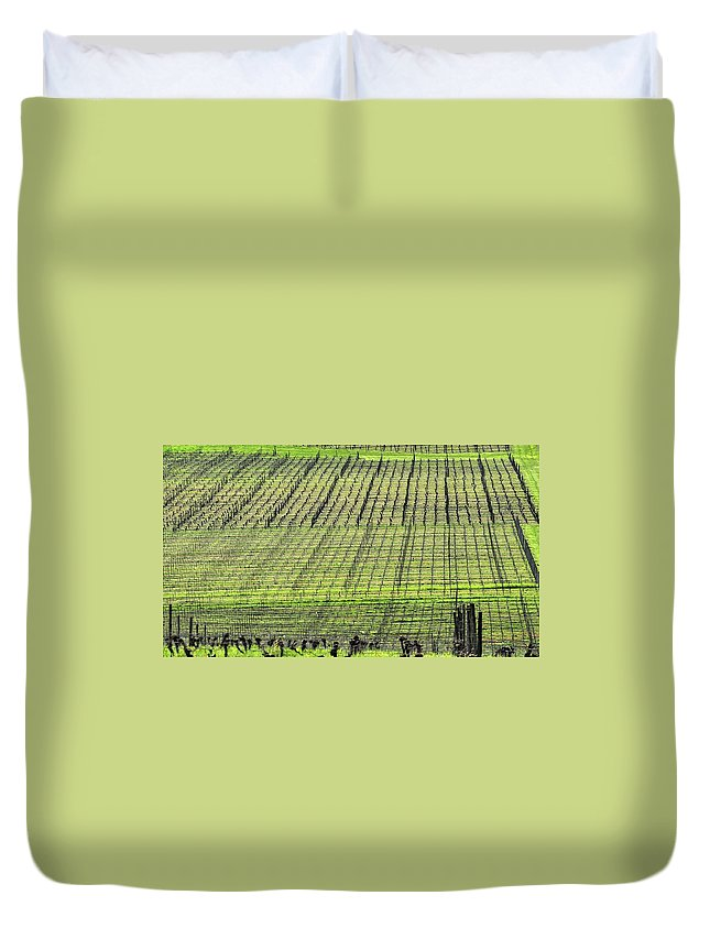 Anne Duvet Cover featuring the photograph Vineyard Lines 23048 by Jerry Sodorff